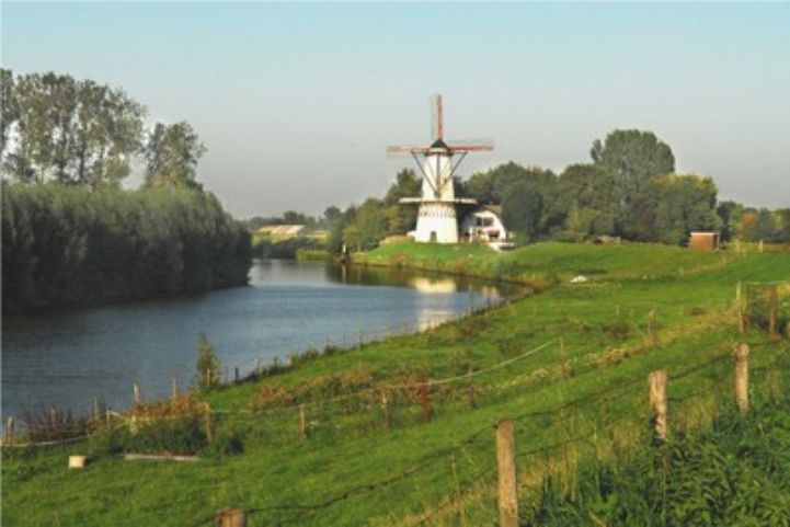 Spring Fever along the EuroVelo 15 – Rhine Cycle Route 2.jpg