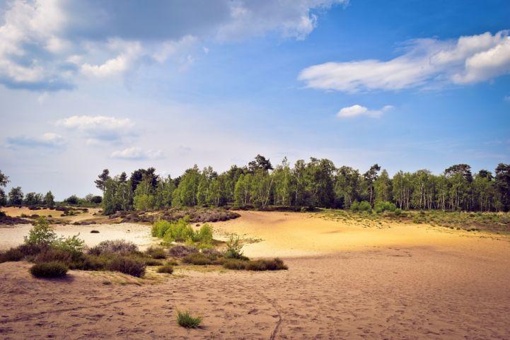 Nationaal Park De Maasduinen, Nederland