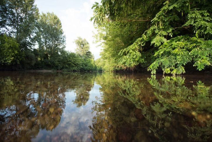 Kühkopf-Knoblochsaue natuurreservaat, Duitsland